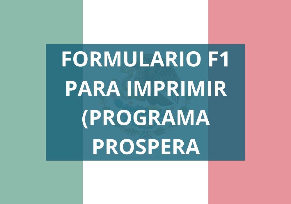Formato F1 Para imprimir