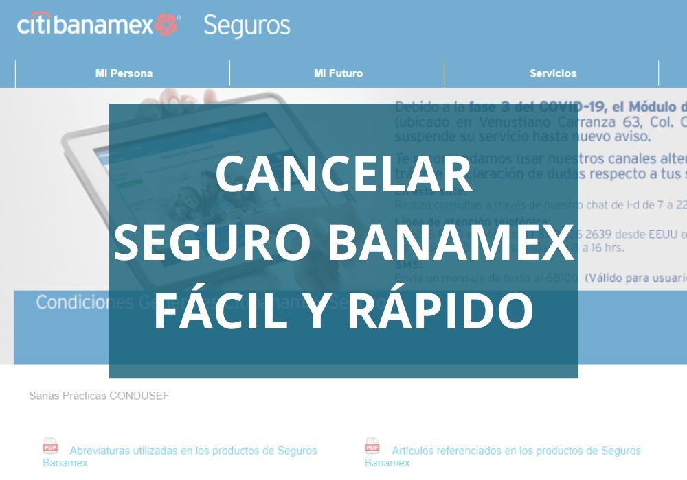 ¿Cómo cancelo mi seguro Banamex?
