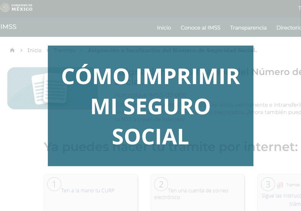 Cómo Imprimir mi Seguro Social